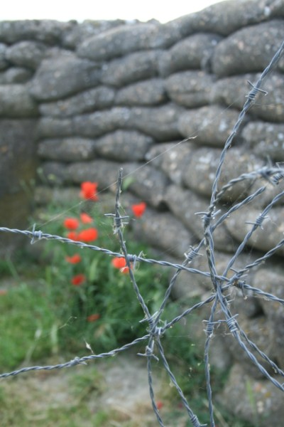trenches barbed wire